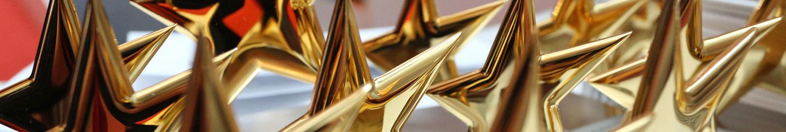 """Preisverleihung """"Sterne des Sports"""" in Gold 2015"""